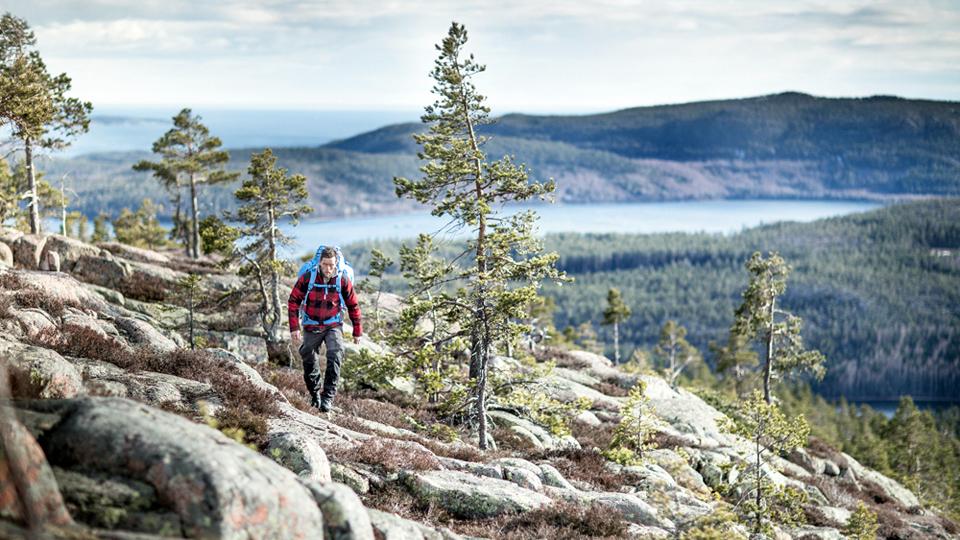 Vandring på Höga Kusten | DAGG